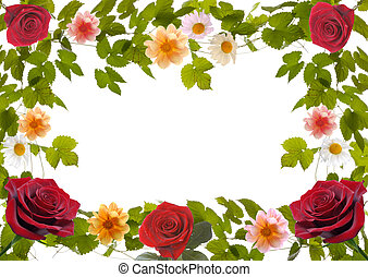 floral frame with red roses and ivy