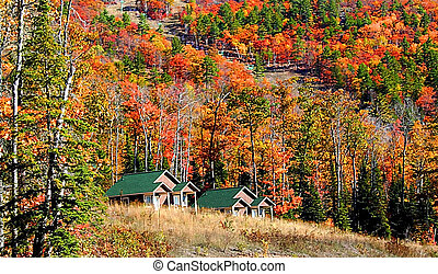 Cabins At Foot Hill - cabins at foot hill with colorful...