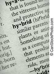 Hybrid - Selective focus on the word hybrid Many more word...