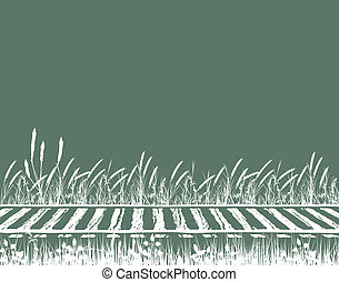 Rails - Illustration of grassy railway tracks