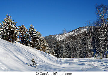Altai Mountain with snow in winter 2008
