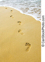 Footsteps - foot steps on the beach in the tropics