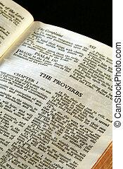 biblia, serie, proverbios