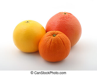 citric fruits - group of a fresh citric fruits on white...