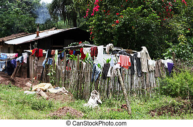 Laundry Day - A rural home hangs its laundry to dry on the...