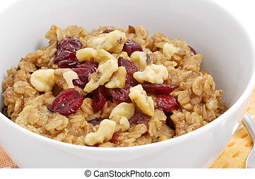 Oatmeal Breakfast - Bowl of oatmeal with dried fruit and...