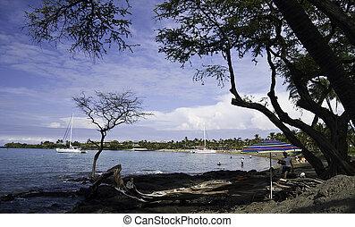Anaehoomalu Beach on the Big Island of Hawaii - Beach scene...