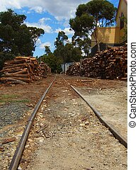 GOLD RUSH TRACKS - gold rush tracks