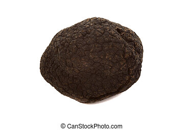 Black Truffles - Black winter truffles from France