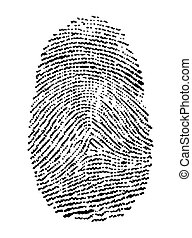 fingerprint - vector illustration of a fingerprint