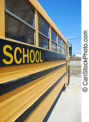 school bus - Yellow school bus