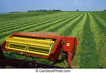 Cutting hay field - Expansive green field being cut for hay,...
