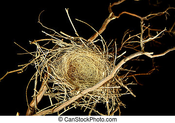 Empty Bird Nest on Black Background - Bird Nest on Black...