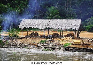 Cutting Down the Rain Forest - This hut was found on the...