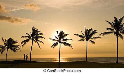 Couple looking at Sunset - Sunset framed by palm trees with...