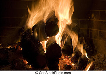fire place - wood is burning inside the fire place with very...