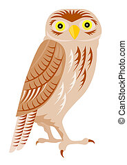 Night Owl - Illustration on wildlife