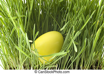 Yellow easter-egg - a yellow easter-egg