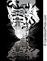 Tiger drinking - Abstract vector illustration of a drinking...