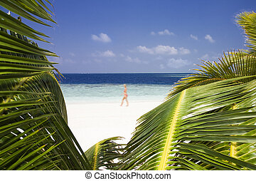 tropical beach: foreshortening of a beach. Useful as a frame