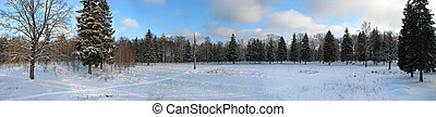 Winter 01 - russian winter wild landscape wide panoramic...