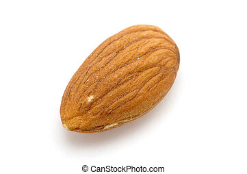 One almond - object on white food almond