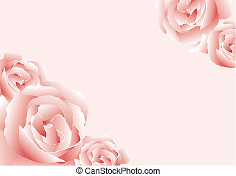 Roses - Abstract vector illustration of some pink roses