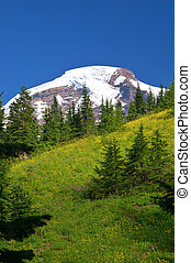 Mountain views - Mount Baker, the 4th highest mountain in...