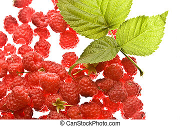 raspberry - Red raspberry with green leaf on the white...