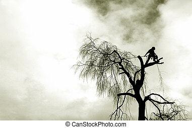 vertigo - grunge tree surgery silhouette