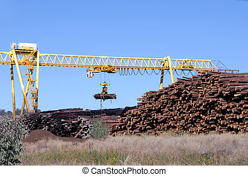 Logging Crane Transporting Cut Logs