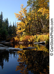 Fall Foliage - Postcard Scenic of Fall Colors Reflected in...