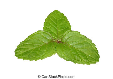 Three mint leaves