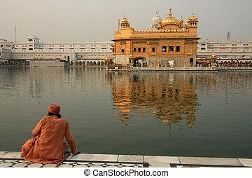 Sikh Man Praying at Golden Temple
