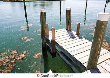 boat dock with ladder, and floating weed