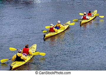 Maine attractions - Group of senior citizens kayaking near...