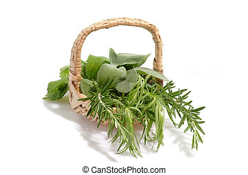 Aromatic Herbs - Culinary herbs in a basket on white...