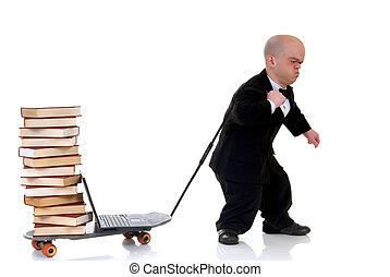 surfando, anão, biblioteca,  Internet