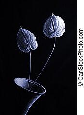 Flowers in vase with moody lighting