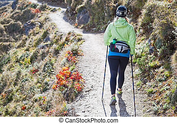 Woman nordic walking in mountains