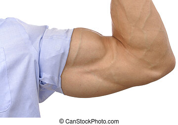 Big biceps - Closeup of flexed arm of muscular man with...