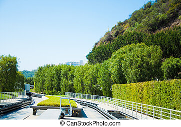 Tree-lined path - Tree lined path with bush and reilway and...