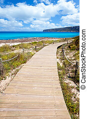 Balearic Formentera island wood beach way on summer day