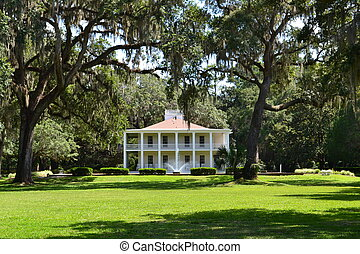 An Antebellum Mansion - A classic antebellum manion of the...