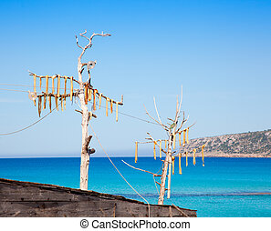 Dried fish peix sec typical Balearic salted food - Dried...