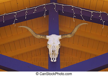 New Mexican Cow Skull with horns hanging against bright...