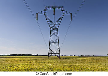 High voltage meta pillars in the middle of a corn field -...