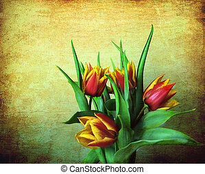a bunch of red and yellow tulips on a grunge background -...