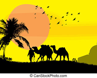 Camels in Sahara on yellow sunset background, vector...