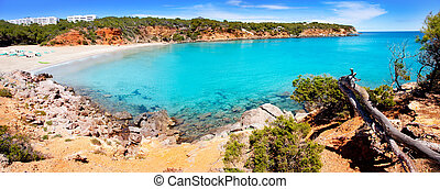 Cala Llenya in Ibiza with turquoise water in Balearic - Cala...